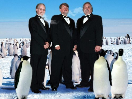 Penguins_wedding_breath_small