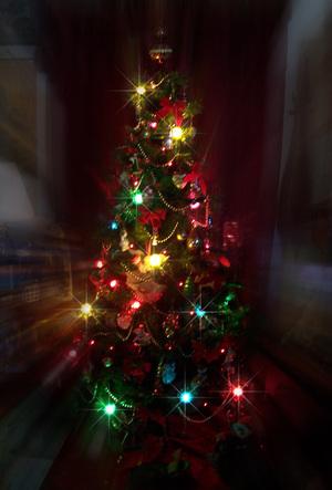 Tree_72
